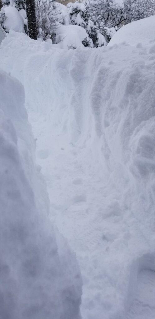 雪やばすぎ